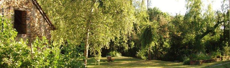 Plantations le jardin sauvage for Plantations jardin